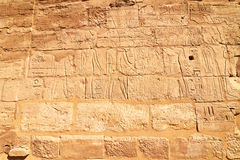 Peça da parede com hieroglyphs em Karnak, Egipto foto de stock royalty free