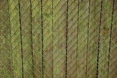 Peça de uma cerca de madeira coberta com a malha do ferro Fotos de Stock Royalty Free