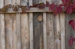 Peça de uma parede de madeira velha Imagens de Stock
