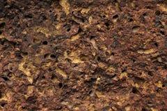 Peça de uma parede de pedra, para o fundo ou a textura Imagem de Stock