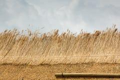 Peça do telhado cobrido com sapê com palha Foto de Stock Royalty Free