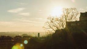Peça velha do panorama da árvore ensolarada da noite do outono de Paris sem folhas video estoque