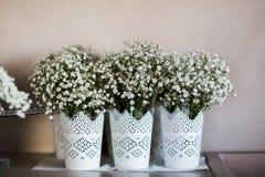 Peças centrais florais Fotografia de Stock