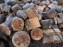 Peças da árvore no inverno fotos de stock royalty free
