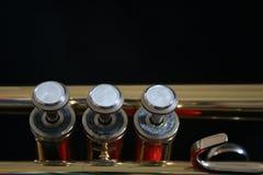 Peças da trombeta Imagens de Stock