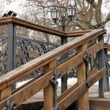 Peças das escadas Escadaria no parque foto de stock royalty free