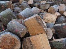 Peças de madeira congeladas imagens de stock