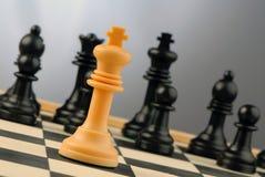 Peças do jogo de xadrez Fotos de Stock