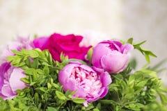Peônias e rosas Peônias em uma caixa de madeira imagens de stock royalty free
