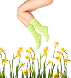 Peúgas e flores Fotos de Stock
