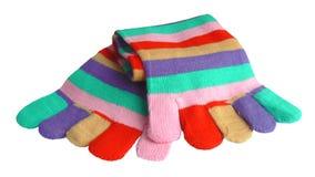 Peúgas Woolly Fotografia de Stock