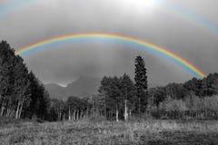 Pełna tęcza nad czarny i biały krajobraz w Kolorado Fotografia Stock