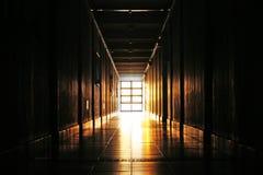 pełne życia słońca Fotografia Royalty Free