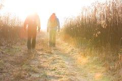 Pełnej długości tylni widok męscy wycieczkowicze chodzi wpólnie w polu Zdjęcie Royalty Free