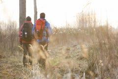 Pełni długość tylni widoku męscy wycieczkowicze chodzi w polu Obrazy Stock