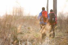 Pełni długość tylni widoku męscy wycieczkowicze chodzi w polu Fotografia Stock