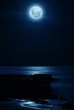 pełnia księżyca obraz royalty free
