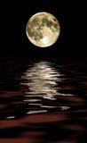 pełnia księżyca Zdjęcie Royalty Free