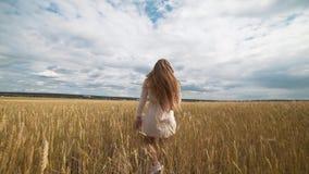 Pełny długość portret piękna młoda szczęśliwa kobieta w białym smokingowym bieg przez pszenicznego pola zbiory wideo