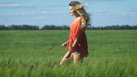 Pełny długość portret pięknej blondynki młoda szczęśliwa kobieta w czerwonym koszulowym odprowadzeniu przy zielonym polem wolno zbiory