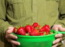 Pełny puchar czerwone soczyste truskawki w man& x27; s ręka Obrazy Stock