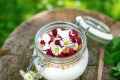 Pełny słój muesli, jogurt, malinki, dokrętki na trawie w ogródzie Domowej roboty śniadaniowi zboża karmowi zdrowe jeść fotografia royalty free