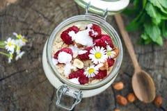 Pełny słój muesli, jogurt, malinki, dokrętki na trawie w ogródzie Domowej roboty śniadaniowi zboża karmowi zdrowe jeść obrazy stock