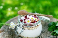 Pełny słój muesli, jogurt, malinki, dokrętki na trawie w ogródzie Domowej roboty śniadaniowi zboża karmowi zdrowe jeść zdjęcia royalty free