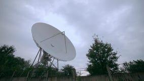 Pełny strzał satelitarny szyk z drzewami zdjęcie wideo