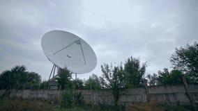 Pełny strzał satelitarny szyk z drzewami zbiory wideo