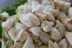 Pełny talerz świeży kraba mięso gotowany kamienny krab dekorował z jarzynowym bocznym naczyniem, Cheliped krab zdjęcie royalty free