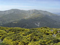 pe Испания естественного парка madrid alara Стоковые Изображения