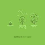 Põe em fase o crescimento vegetal Brotar na terra feita na linha estilo na moda Foto de Stock Royalty Free