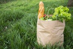 Pełna papierowa torba zdrowi produktów stojaki na trawie Boczny v Fotografia Stock