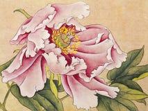 Peônia brilhante da flor ilustração do vetor