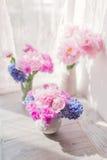 Peônia e jacinto cor-de-rosa Imagens de Stock