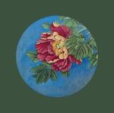 Peônia vermelha em um círculo Fotografia de Stock Royalty Free