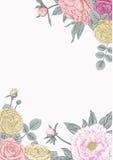 Peônias e rosas Cartão de casamento Fotos de Stock Royalty Free