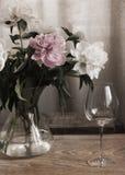 Peônias no vaso de vidro, vidro de vinho Imagem de Stock Royalty Free