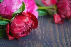 Peônias vermelhas e cor-de-rosa em uma tabela de madeira Fundo floral bonito do fundo… com flores coloridas Fotos de Stock