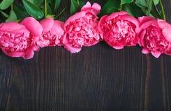 Peônias vermelhas e cor-de-rosa em uma tabela de madeira Fundo floral bonito do fundo… com flores coloridas Foto de Stock