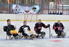 Pełnozamachowi gracz w hokeja Fotografia Royalty Free