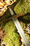 Épée sur la mousse de forêt Image libre de droits
