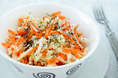 Pe-tsai cabbage salad with carrot, dill and poppy seed Royalty Free Stock Photos