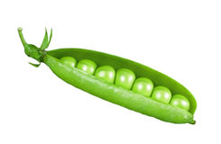 Pea Royalty Free Stock Photos