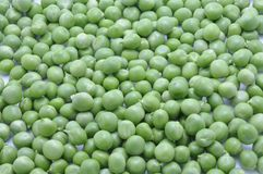 Pea Royalty Free Stock Photo