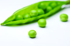 Pea Stock Images