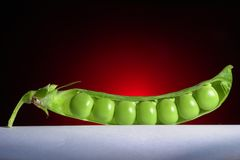 Pea Royalty Free Stock Image