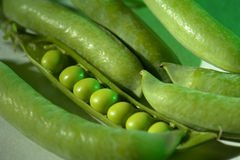 Pea Royalty Free Stock Photography
