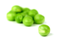 Pea bean isolated on white Stock Photography